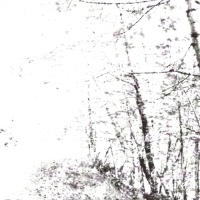 Agalloch The White EP Album Cover