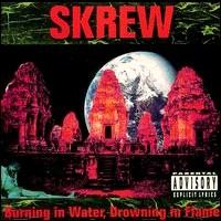 [Skrew Burning In Water, Drowning In Flame Album Cover]